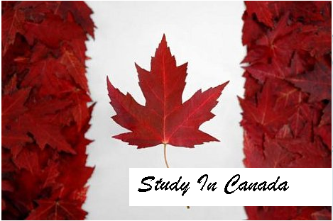 how to study midwifery in canada